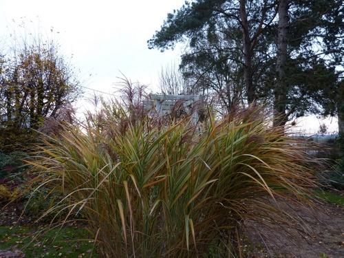 belles journées automne 2012