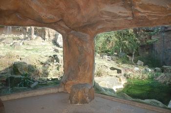 zoo cologne d50 2012 078