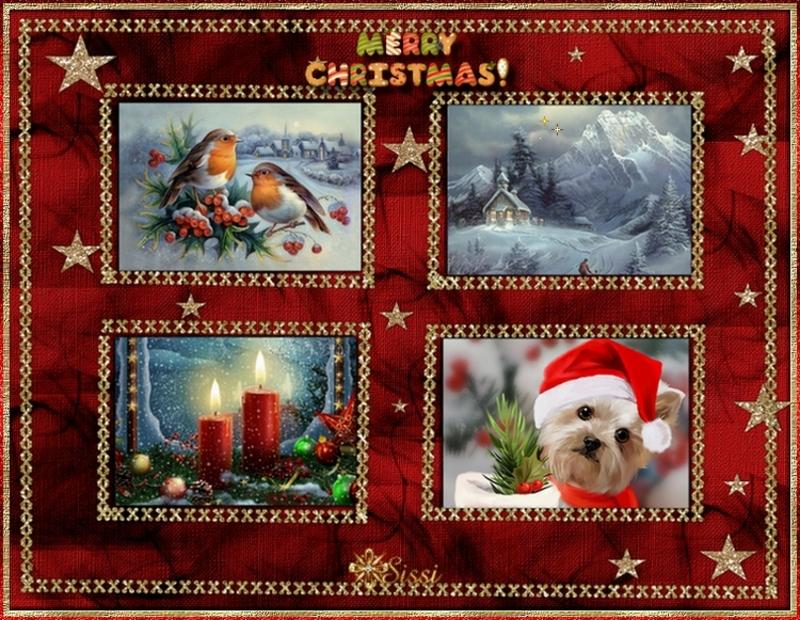 * Joyeux Noël *