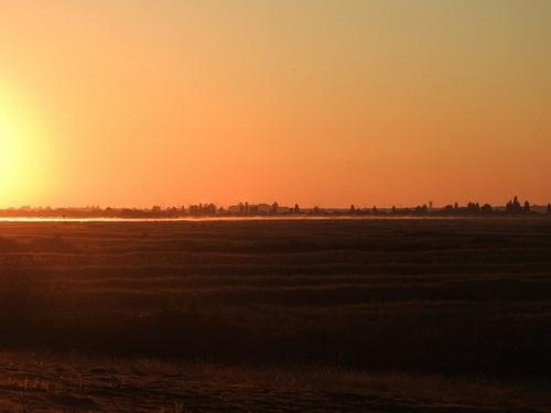 ... ce matin dans notre marais...