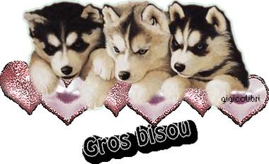 gif bisou