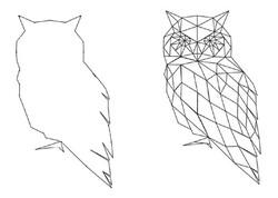 Les chouettes géométriques