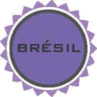 Littérature brésilienne Bibliolingus