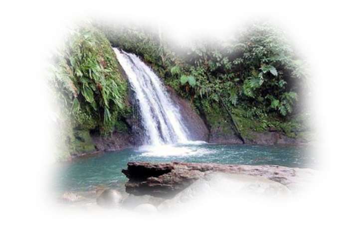 Cascades 1