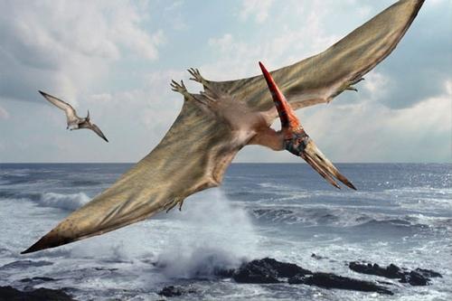 L'attaque des ptérodactyles