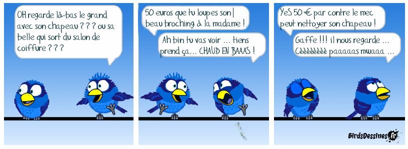 Quand les birds s'ennuient ...