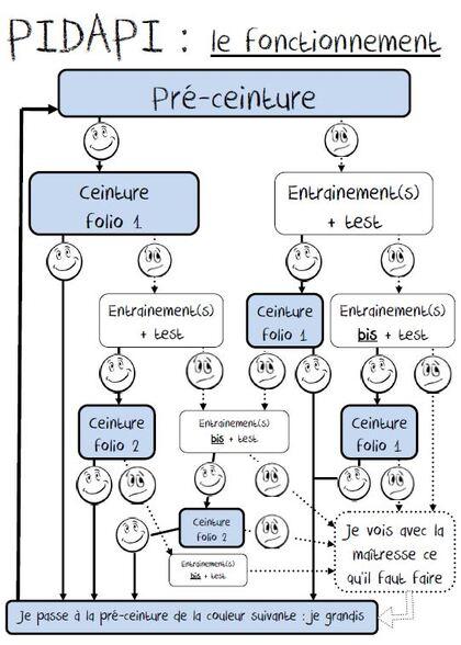 Pidapi: organigramme de fonctionnement