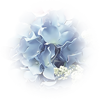 *** Flowered ***