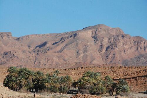 Une mini oasis de montagne