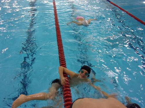 stage natation pour les CM2