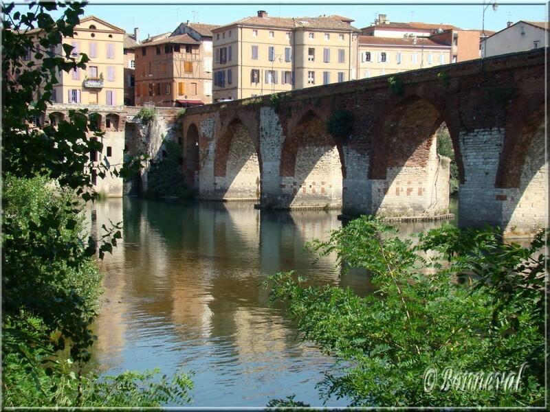Albi le Pont Vieux et les maisons de la rive droite