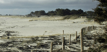 Sainte-Marine : ton sable fout le camp !