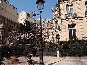 Parc Monceau 23-3-2012007