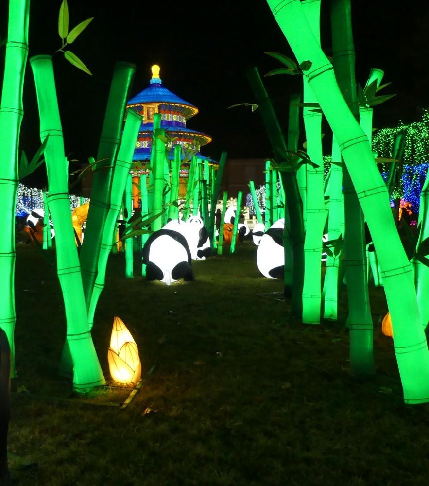 Les pandas, au Festival des lanternes chinoises à Gaillac...