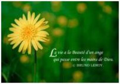 Aimer la vie, aider son prochain par Mathilde T et Morganne L