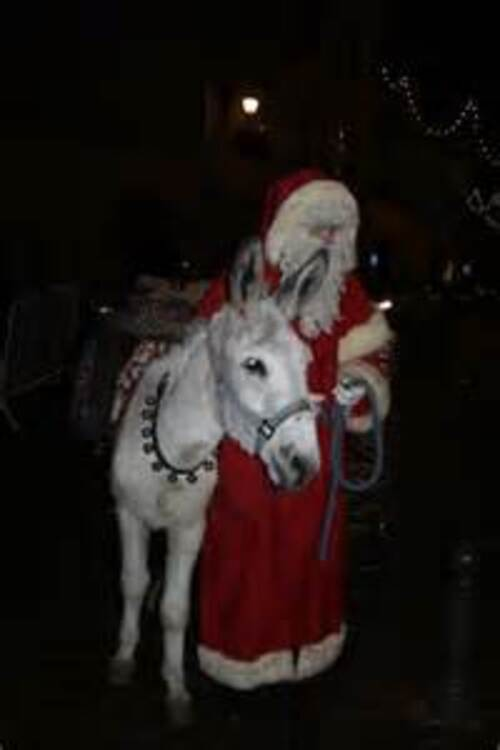 L'âne de Saint Nicolas