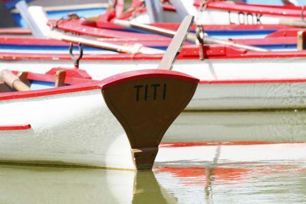 Barque-3