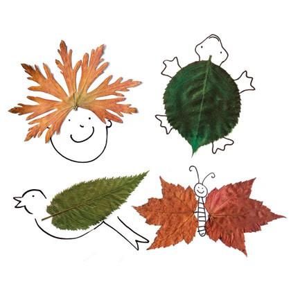 Arts visuels avec les feuilles
