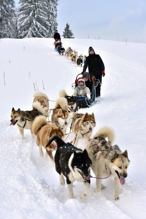 Nos activités au Meix Lagor l' hiver
