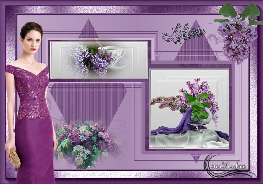 ♥ Le lilas ♥