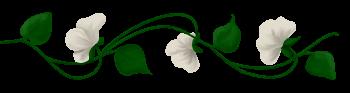 ♥ Au jardin des roses  ♥