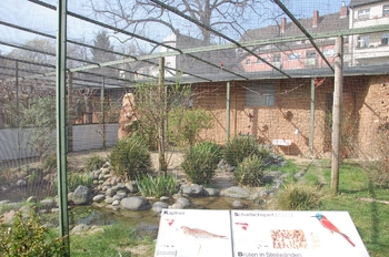 zoo cologne d50 2012 150