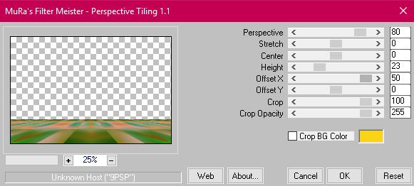 capture 12 - Perspective Tilling.png