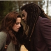 Capture New Moon (guide officiel New Moon)