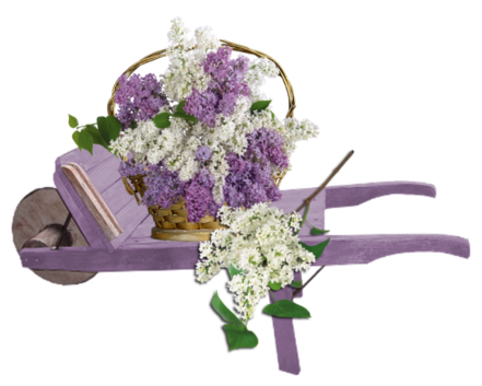 """Résultat de recherche d'images pour """"bisous lilas"""""""