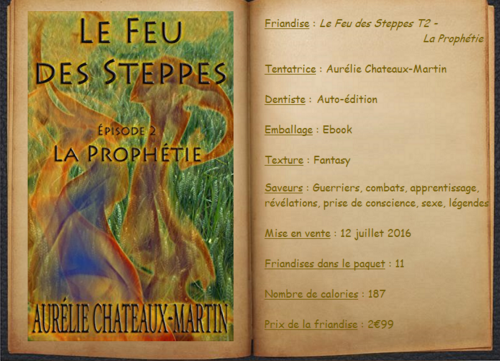 Le Feu des Steppes T2 - La Prophétie - Aurélie Chateaux-Martin