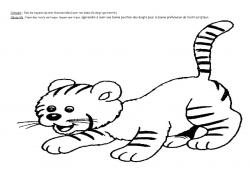 Graphisme: les rayures du chat