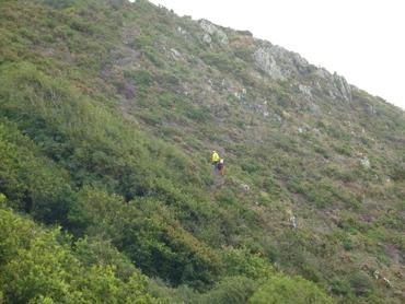 Sur le Sentier Côtier, GRP 223 Chemin des Belvédères du Mont Saint-Michel.