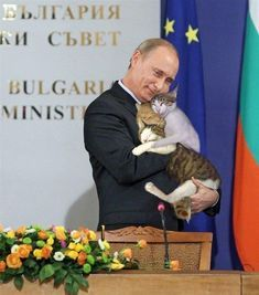 Any politician can kiss babies, Putin hugs an armful of cats... and they look damn happy.