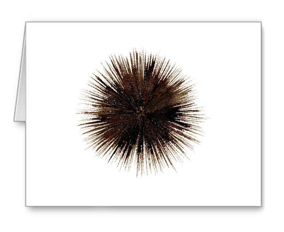 """Résultat de recherche d'images pour """"gifts oursins de mer"""""""