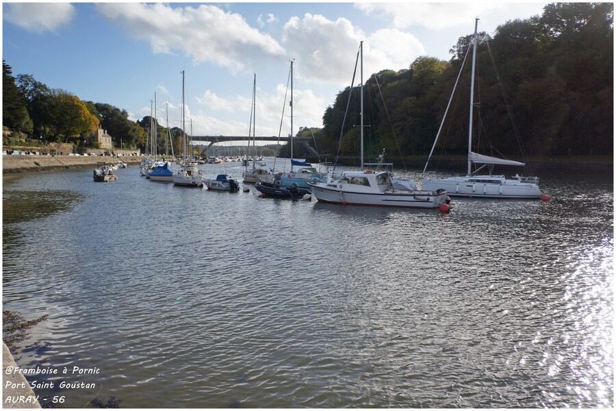 Port de St Goustan - 2014