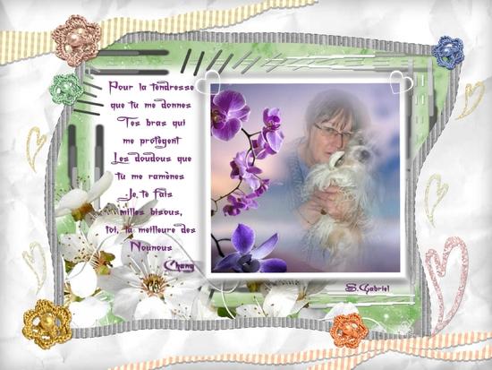 collage_2013-02-10_18-11-51.p