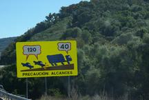 DE LA TOURAINE A ALGECIRAS
