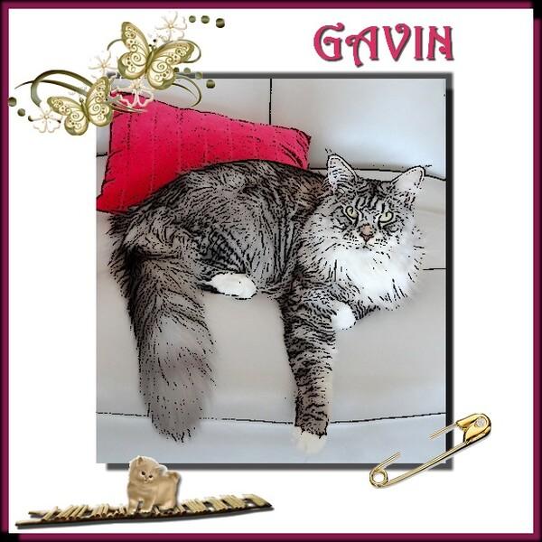 Pour GAVIN ....
