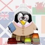 Compréhension écrite (lecture) en Anglais