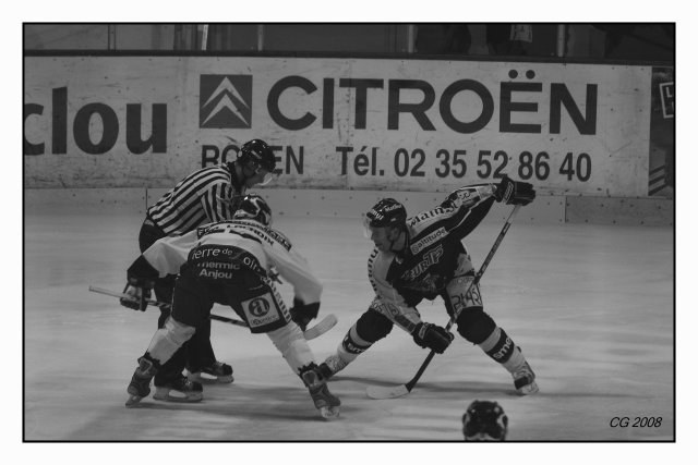 Hockey sur Glace: ROUEN-ANGERS