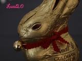 Chocolat (Projet Photo 21/52)