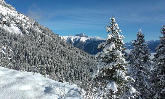 Au bord du chemin... l'hiver enfin