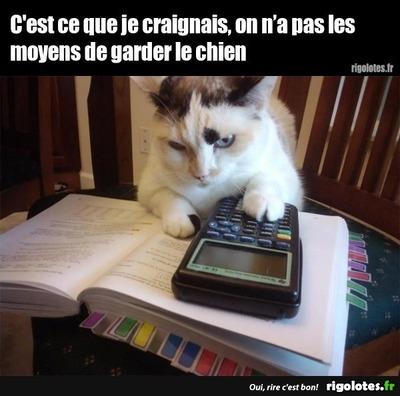 Sur le Net on apprend qu'en France on est sur une autre palnète.