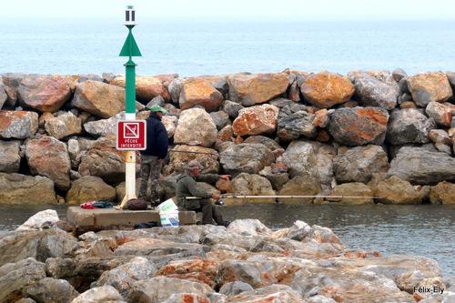 Promenade à Sainte Marie la Mer ... (2)