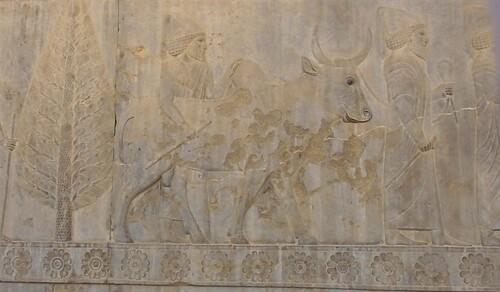 Persépolis (3) : l'escalier est de l'Apadana