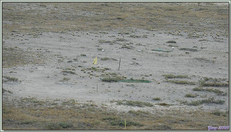 Au bord de la rivière Qinnguata Kuussua : le second terrain de golf le plus septentrional du monde, mais probablement le plus étonnant ! - Kangerlussuaq - Groenland