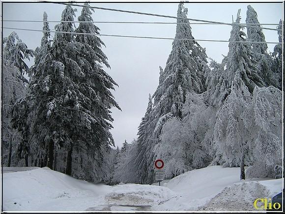 Col du Bonhomme -Route Crêtes -Hiv 2010