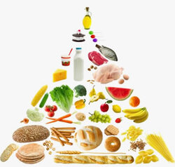 L'importance des vitamines et des oligo-élèments