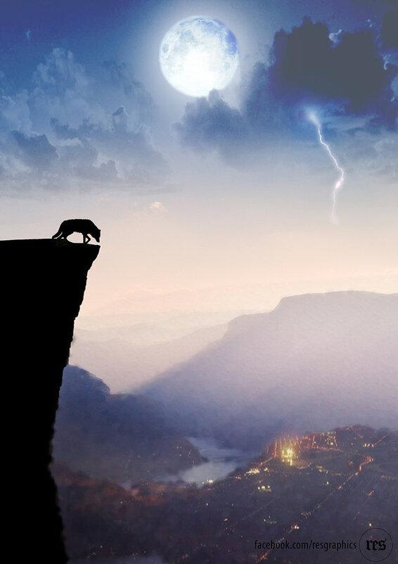 resresres -  Le loup domine la ville de la falaise