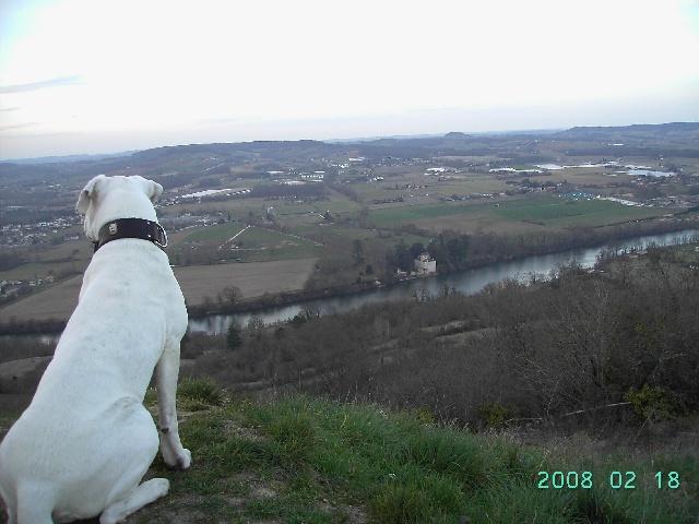 Panorama sur la Vallée du Lot vu par Aura